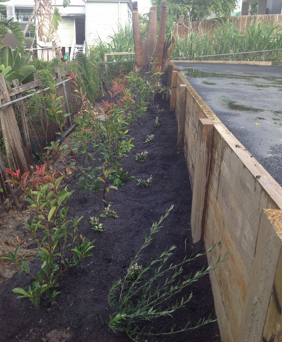 Landscape gardener construction service landscape for Landscape gardeners brisbane